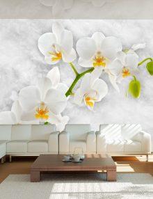 Carta da parati orchidea per fiori grandi e stile liberty for Carta da parati fiori grandi