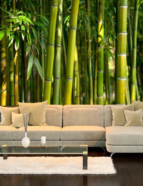 Carta da parati foresta di bamb fotomurale carta parati for Carta da parati per ufficio